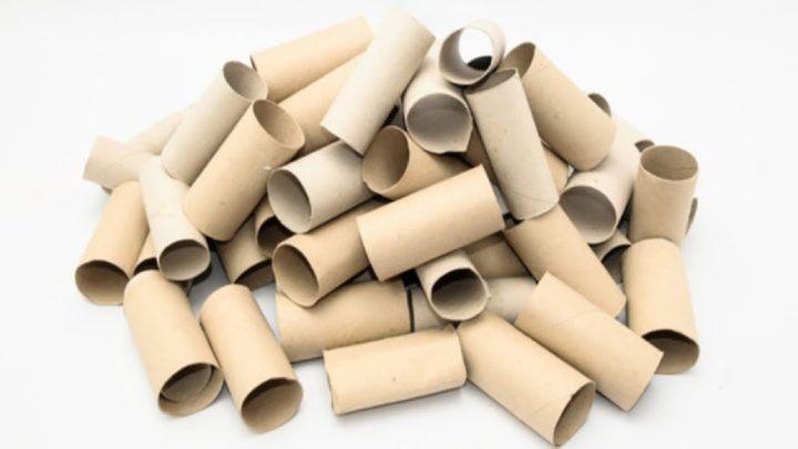A 6 legjobb mód arra, hogy újrahasznosítsd a wc papír gurigákat